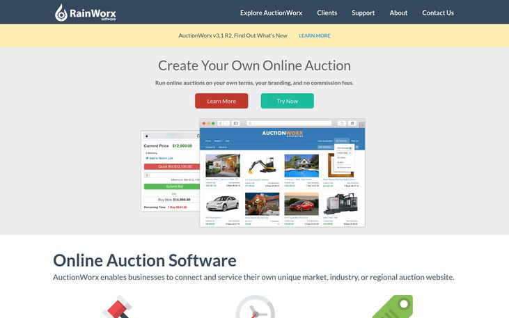 RainWorx - Auction Software