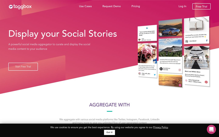 Taggbox - Social Media Management Software